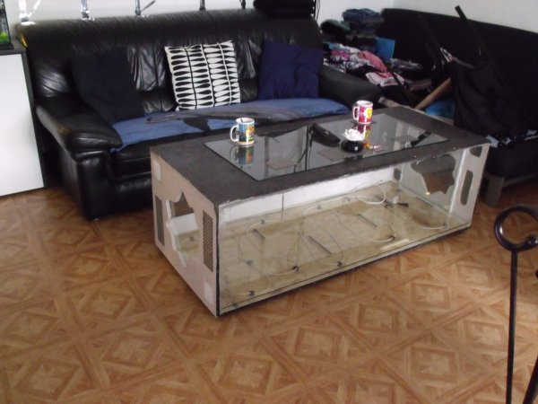 Fabrication d 39 une table basse terrarium blog de elaphes - Table basse bio ethanol ...